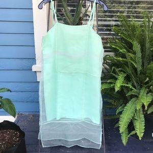 Whitney Eve Sheer Lace Paneled Silhouette Dress